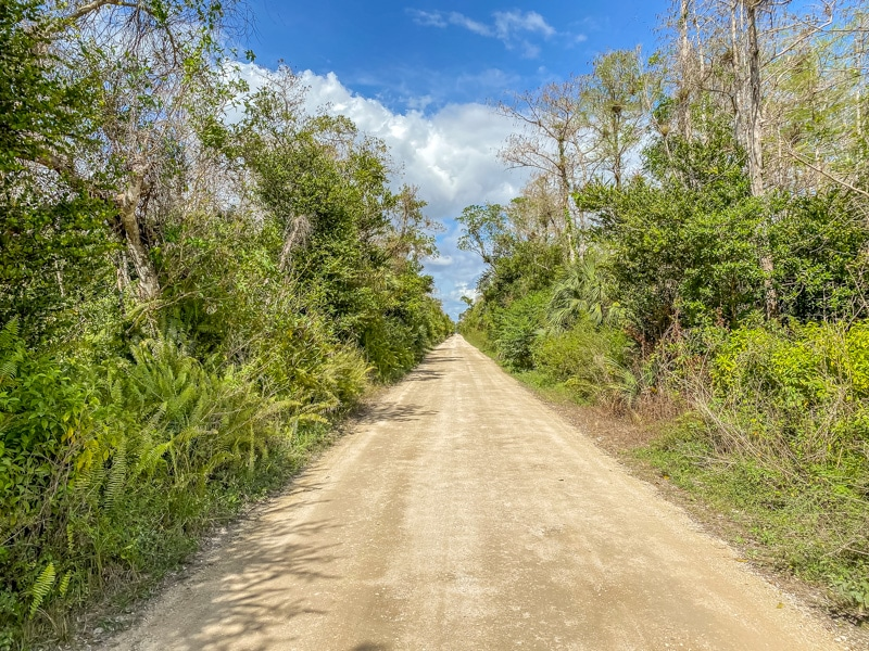 Loop Road Florida