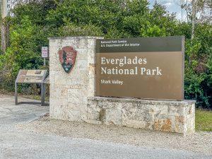 Everglades, prachtige natuur in de omgeving van Miami